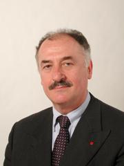 senato.it - Scheda di attività di Fernando ROSSI - XV Legislatura