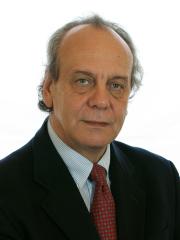 Foto del Senatore Nitto Francesco PALMA