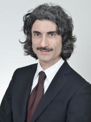 Foto del Senatore Giuseppe AUDDINO