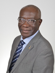 Foto del Senatore Tony Chike IWOBI