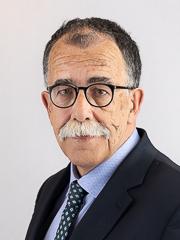Foto del Senatore Sandro RUOTOLO